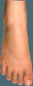 Upper Foot