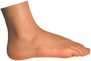 Outer Side Foot